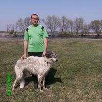 Аатолий, 45 лет, Рак, Конотоп