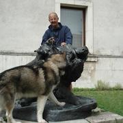 tomito 53 Вроцлав