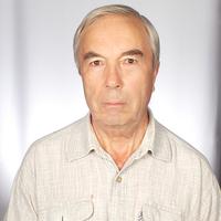 Соколов Николай данил, 79 лет, Близнецы, Красноярск