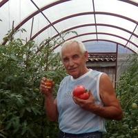 Партнёр, 59 лет, Весы, Белебей