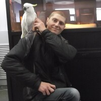 Владимир, 32 года, Дева, Кирсанов