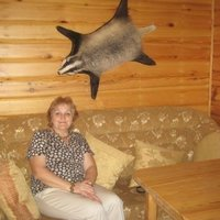 Татьяна Молодшева, 60 лет, Лев, Воронеж