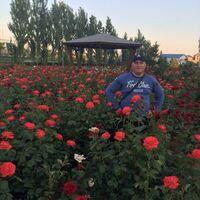 Алексус, 39 лет, Овен, Ванновка