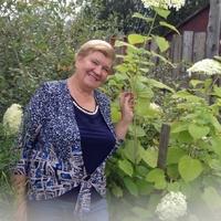 Валентина, 66 лет, Скорпион, Санкт-Петербург