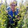 галина, 64, г.Заводоуковск