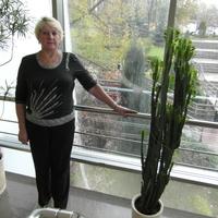 Анна, 69 лет, Стрелец, Москва