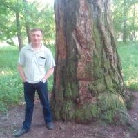 Алексей, 39 лет, Скорпион, Санкт-Петербург