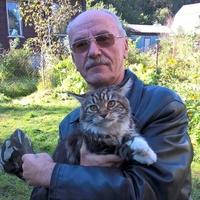 Коцуконь Владимир, 72 года, Лев, Москва