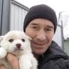Андрей, 39, г.Цивильск