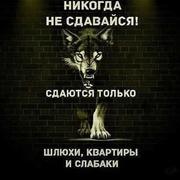 БЕК 37 Москва