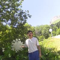 жора, 58 лет, Рак, Белореченск