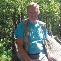 Артур Яковлевич, 66 лет, Весы, Бийск