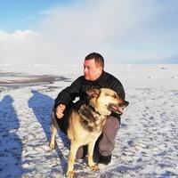 Evgeni, 38 лет, Скорпион, Таллин