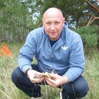 Владимир, 47 лет, Скорпион, Костанай