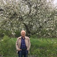 Василий, 71 год, Весы, Белгород