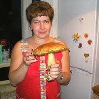 Елена, 42 года, Козерог, Москва