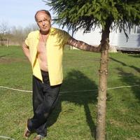 сергей, 64 года, Дева, Санкт-Петербург