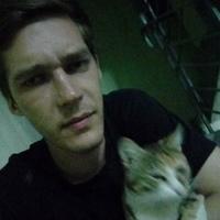 глеб, 29 лет, Козерог, Москва