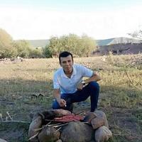 Хаби, 25 лет, Лев, Ташкент