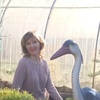 Liliya, 42, Birsk