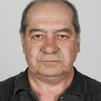 Иван Петров, 64 года, Овен, Slatina