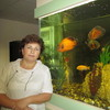 Валентина, 63, г.Суздаль