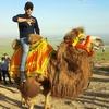 Furqat, 33, Samarkand