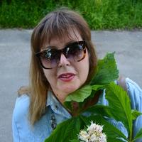 Наташа, 49 лет, Рыбы, Калач-на-Дону
