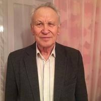 Yury, 73 года, Лев, Томск