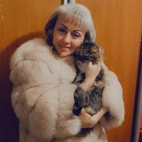 Наташа, 44 года, Скорпион, Киев