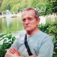 лев  лободанов, 79 лет, Козерог, Электросталь