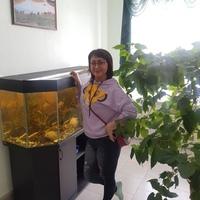 Светлана, 47 лет, Козерог, Самара