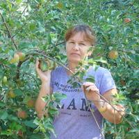 Ирина, 52 года, Стрелец, Волгоград