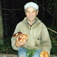 борйс, 71 год, Весы, Москва