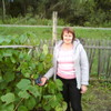 Svetlana, 51, Barnaul