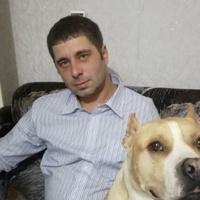 Андрей, 37 лет, Дева, Нижний Новгород