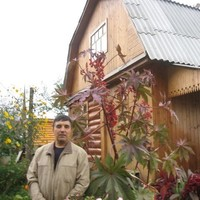 Фарид, 71 год, Овен, Барнаул