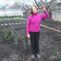 Татьяна, 61 год, Близнецы, Краматорск