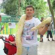Андрей, 33 года, Близнецы