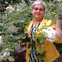 Светлана, 69 лет, Водолей, Волгодонск