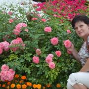 Светлана 55 лет (Козерог) Высокополье