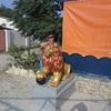 Татьяна, 51, г.Кызыл