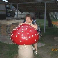 Наталья, 53 года, Водолей, Нижний Новгород