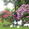 Эдвард Петерсон, 69, г.Эссен