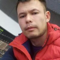 Рома, 36 лет, Рак, Фрязино