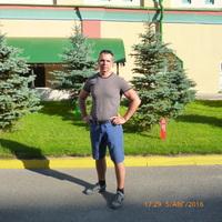 алексеи, 43 года, Стрелец, Тольятти