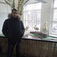Дмитрий, 34 года, Рыбы, Калининград
