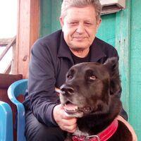 Владимир, 66 лет, Водолей, Москва