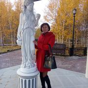 Роза 50 Муравленко