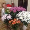 Светлана, 64, г.Липецк
